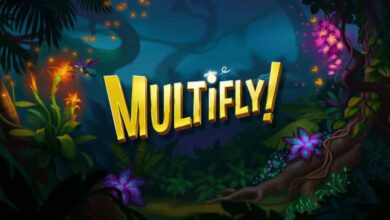 Multifly Big Win